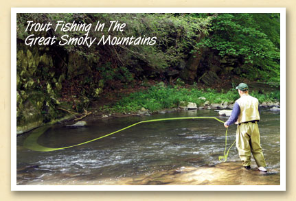 Cherokee nc trout fishing regulations for Nc trout fishing regulations